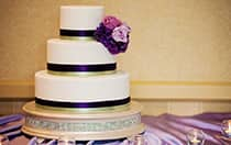 Escape Collection Cakes