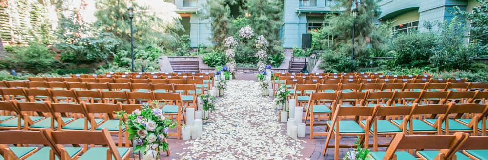 Flower petals cover an aisle on a courtyard lined with many small trees