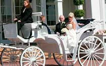 A bride and 2 men riding in a horse drawn carriage